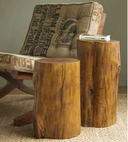 Obsessions rustic stump furniture design sensibility for Stump furniture making